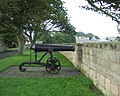 Cannon on Berwick Walls - geograph.org.uk - 775216.jpg