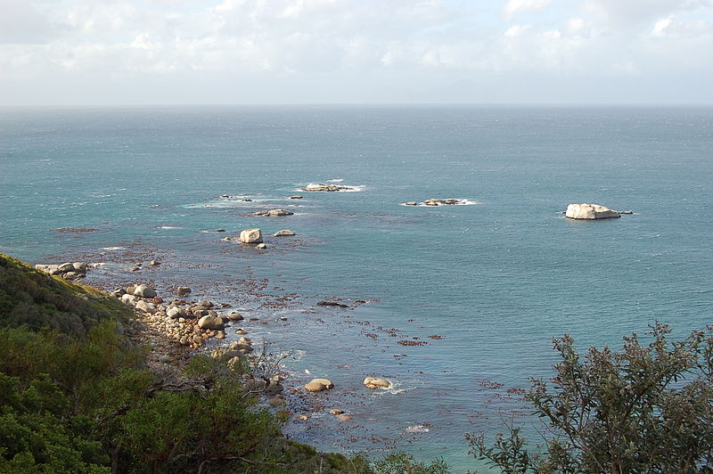 File:Cape of Good Hope, South Africa (3251437334).jpg