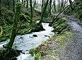 Capel Iwan - geograph.org.uk - 343486.jpg