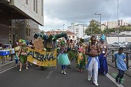 Carnaval FDF 2019 11.jpg