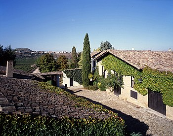 Casa contino mas vinedos low.jpg