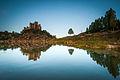 Castle Island (14693413309).jpg