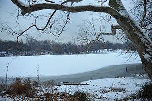 English: Central Park in winter under snow (Ne...