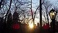 Central Park sundown (New York) (43429722740).jpg