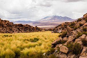 Vista do Cerro Aucanquilcha com o vulcão Olca ao fundo, região de Antofagasta, Reserva nacional Alto Loa, norte do Chile.  (definição 8688×5792)
