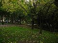 Cerro Condell (17314620272).jpg