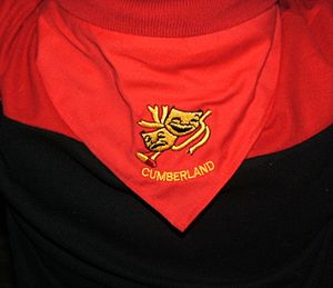 Gang Show - A typical show scarf – this one is from Cumberland Gang Show in Australia