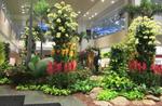 Changi Airport.png