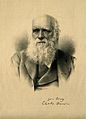 Charles Robert Darwin. Lithograph. Wellcome V0001468.jpg