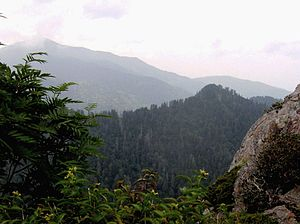 Charlies Bunion - The view looking northwest from Charlies Bunion, with Mount Le Conte rising on the left
