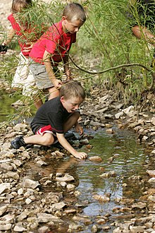 How To Protect Kids From Nature Deficit >> Nature Deficit Disorder Wikipedia