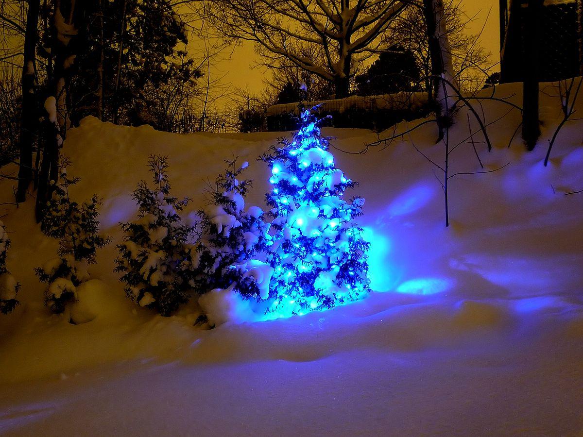 Christmas Ligjts