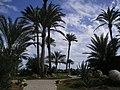 Cielo a Pecorelle - panoramio.jpg