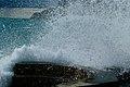 Cinque Terre (Italy, October 2020) - 28 (50542875953).jpg
