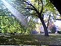 City Edge Park.jpg