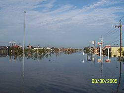 The intersection of Clearview and Veterans the day after Katrina