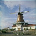 Collectie Nationaal Museum van Wereldculturen TM-20029585 Windmolen 'De Olde Molen' Aruba Boy Lawson (Fotograaf).jpg