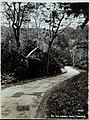 Collectie Nationaal Museum van Wereldculturen TM-60062329 Landweg, Trinidad Trinidad fotograaf niet bekend.jpg
