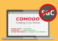 Comodo SGC Certificate.png