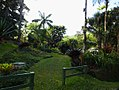 Costa Rica DSCN2763-new (30762135330).jpg