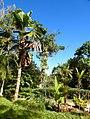 Costa Rica DSCN3001-new (30762137850).jpg