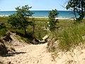 Cowles Bog Dunes - panoramio.jpg