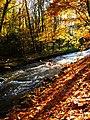 """Creek """"Würm"""" - panoramio.jpg"""