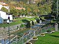 Crespino - Lamone river 3.JPG
