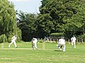 Cricket at Clavering, clean bowled - geograph.org.uk - 1371492.jpg