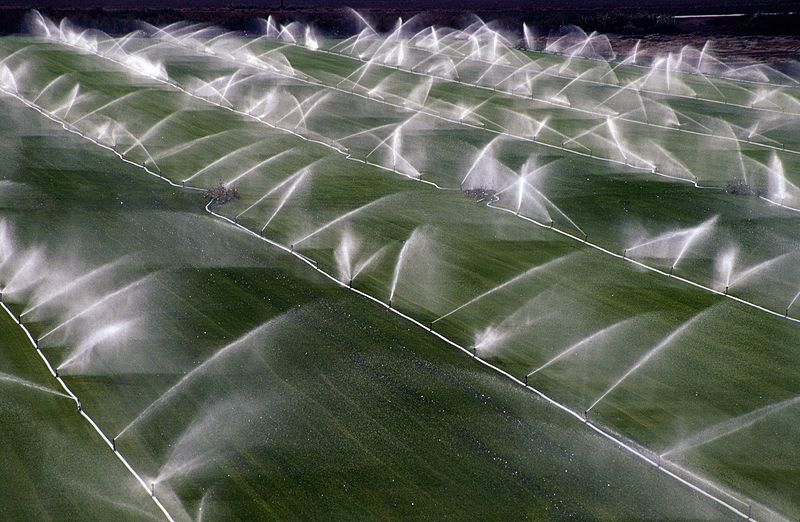 Crop sprinklers Rio Vista California 15 Jul 2004-002.jpg