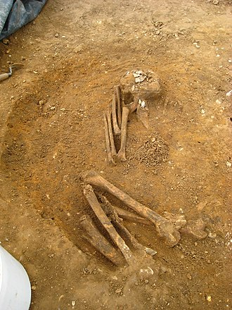 Hartismere School - Neolithic Crouch Burial