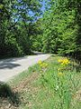 Crowley-s Ridge Parkway Phillips County AR 010.jpg