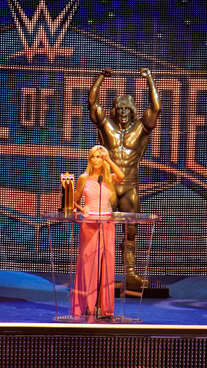 WWE Hall of Fame - Dana Warrior presents the inaugural Warrior Award at the 2015 Hall of Fame ceremony