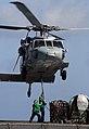Defense.gov News Photo 070515-N-3038W-210.jpg