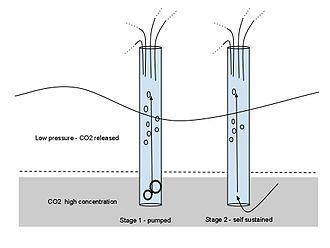 Lake Nyos - Degassing pump schematic