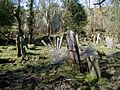 Derelict Cemetery - geograph.org.uk - 19212.jpg