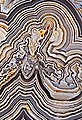 Details, Crazy Lace Agate - Macro Panorama (cropped).jpg