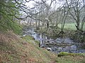 Devil's Water - geograph.org.uk - 1264580.jpg