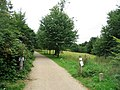 Disabled access to Wandlebury ring - geograph.org.uk - 1147647.jpg