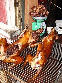 tehran grill