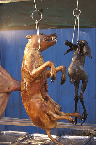 Carnism - Cooked dog and poultry in China.  In some Western cultures, dogs are not eaten as meat but poultry is, whereas in some Eastern cultures dogs are eaten as dog-meat.