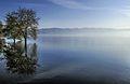 Dojran Lake 194.jpg