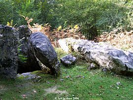 Dolmen in the Arbailles Forest