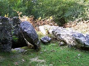 Aussurucq - Dolmen in the Arbailles Forest