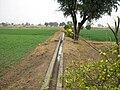 Drain for irrigation by tube wells, Pakistan.jpg