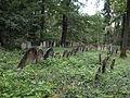 Dub, židovský hřbitov.JPG