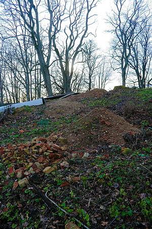 Dubingiai Castle - Image: Dubingiai Castle