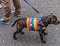 "Dublin LGBTQ Pride Festival 2012- ""Show your True Colours"" (7473109652).jpg"