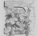 Dumas - Vingt ans après, 1846, figure page 0013-2.png