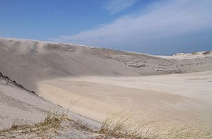 Dune Slowinski National Park.jpg